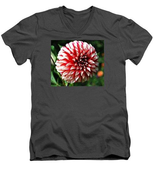 Zesty Dahlia Men's V-Neck T-Shirt