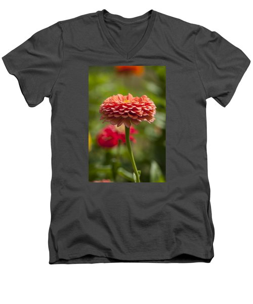 Zinnia Portrait Men's V-Neck T-Shirt