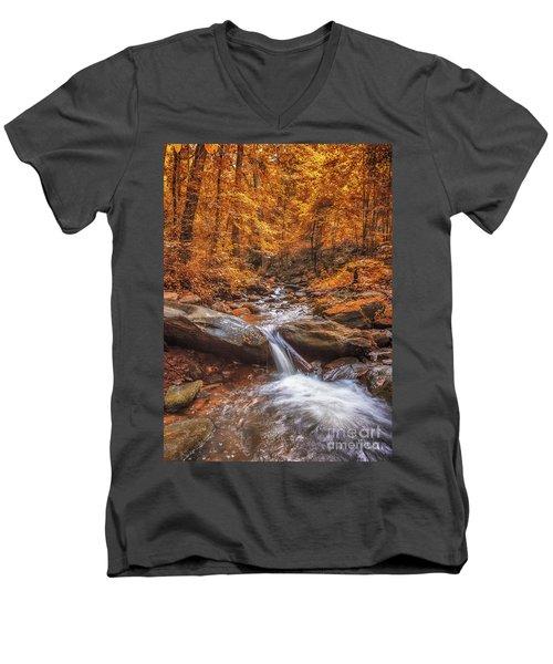 Amicalola Falls Men's V-Neck T-Shirt