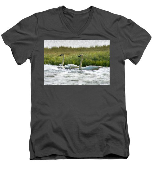 Arctic Tundra Swans And Cygnets Men's V-Neck T-Shirt