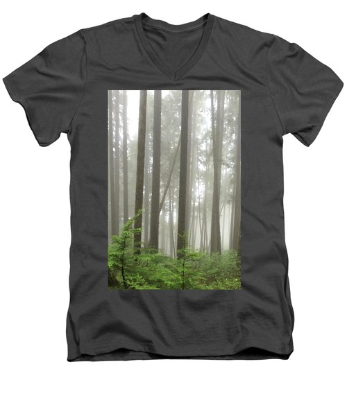 Foggy Forest Men's V-Neck T-Shirt