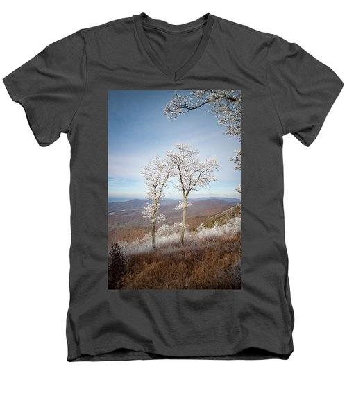 Hoarfrost Gathers Men's V-Neck T-Shirt