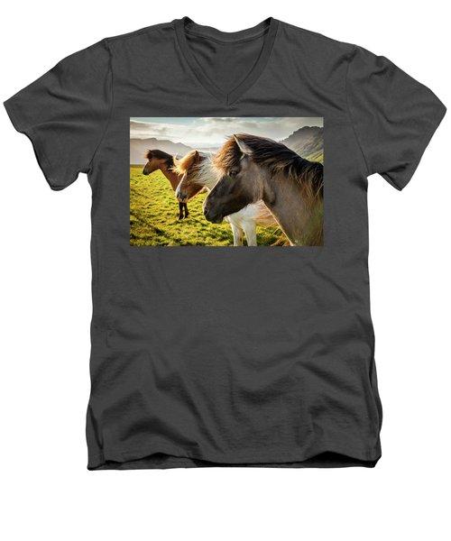Icelandic Horses Men's V-Neck T-Shirt