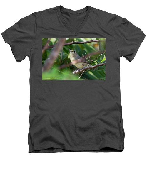 Thick-billed Vireo Men's V-Neck T-Shirt