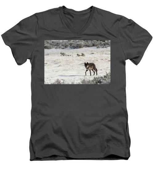 W19 Men's V-Neck T-Shirt