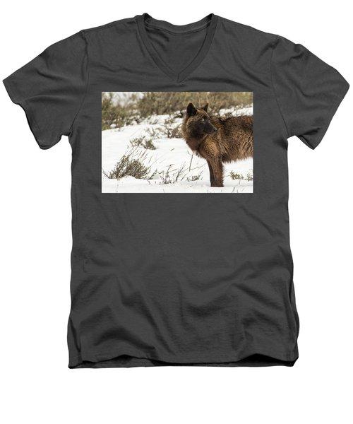 W6 Men's V-Neck T-Shirt