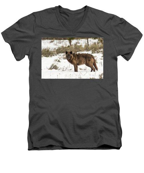 W7 Men's V-Neck T-Shirt