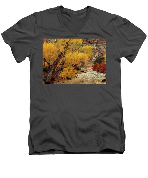 Zion National Park Autumn Men's V-Neck T-Shirt