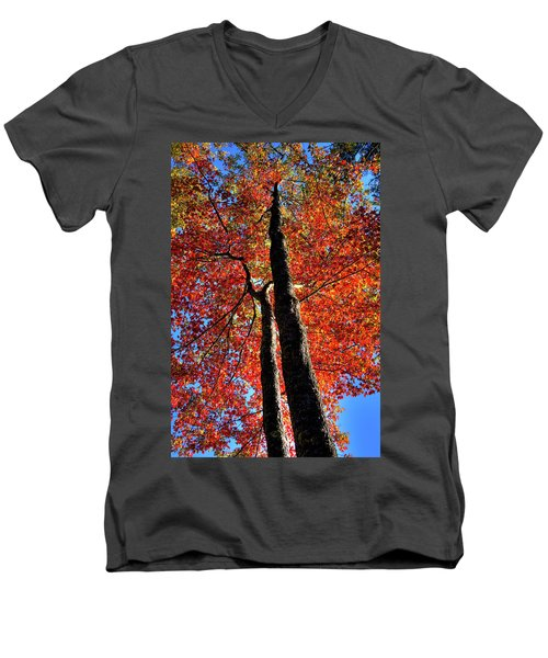 Men's V-Neck T-Shirt featuring the photograph Autumn Reds by David Patterson