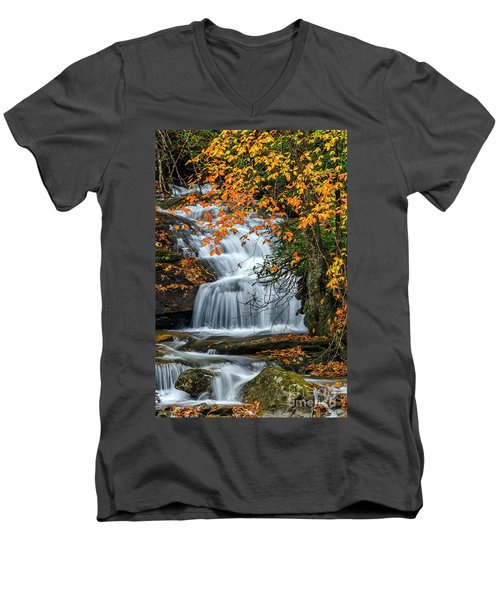 Waterfall And Fall Color Men's V-Neck T-Shirt