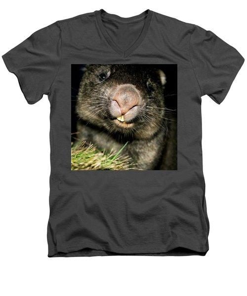 Wombat At Night Men's V-Neck T-Shirt