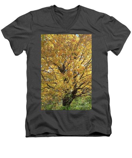 2018 Edna's Tree Up Close Men's V-Neck T-Shirt