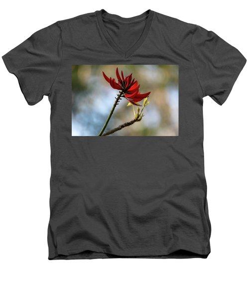Coral Tree Flowers Men's V-Neck T-Shirt