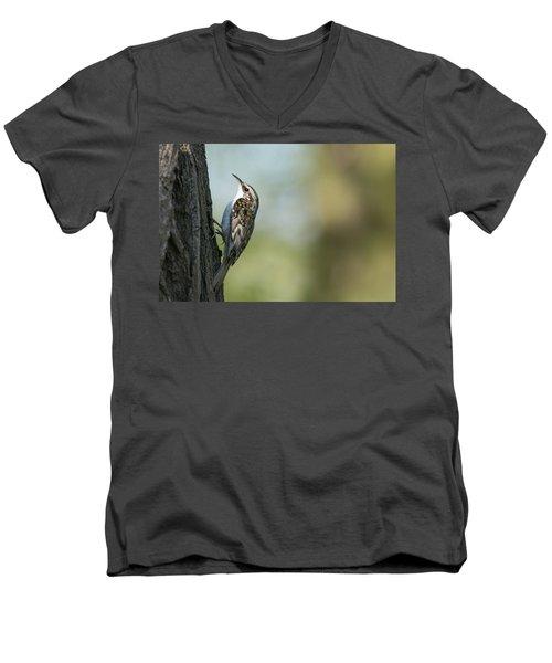 Treecreeper Men's V-Neck T-Shirt