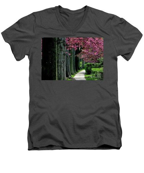 5-29-2009l Men's V-Neck T-Shirt