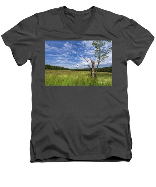 The Harz National Park Men's V-Neck T-Shirt