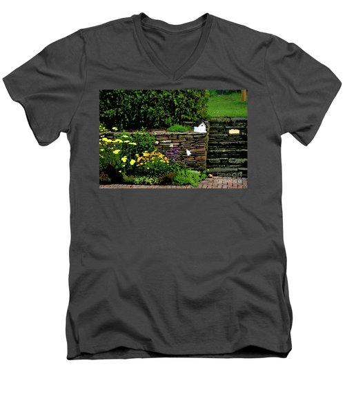 7-14-2006img9048ab Men's V-Neck T-Shirt