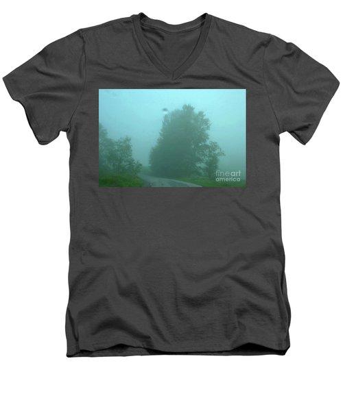 7-14-2006img9057a Men's V-Neck T-Shirt