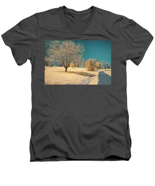 A Mustard World Men's V-Neck T-Shirt