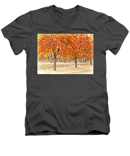 A Touch Of Winter Men's V-Neck T-Shirt