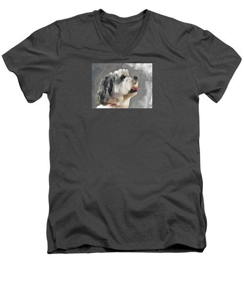 Abby 2 Men's V-Neck T-Shirt