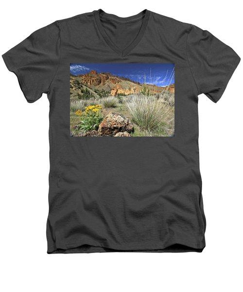 Above Juniper Gulch Men's V-Neck T-Shirt
