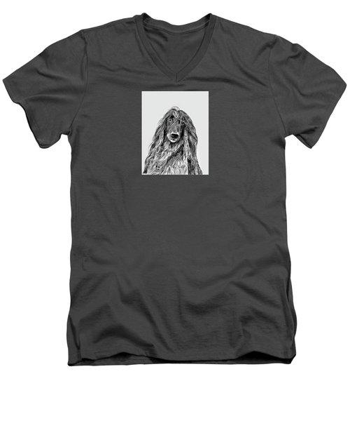 Afghan Hound 3 Men's V-Neck T-Shirt