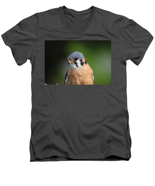 American Kestrel 5151801 Men's V-Neck T-Shirt