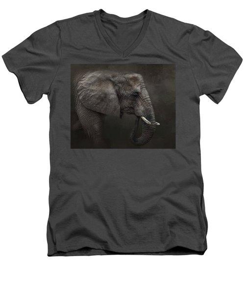 Ancient Wisdom Men's V-Neck T-Shirt