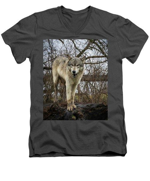 Anit I Pretty Men's V-Neck T-Shirt