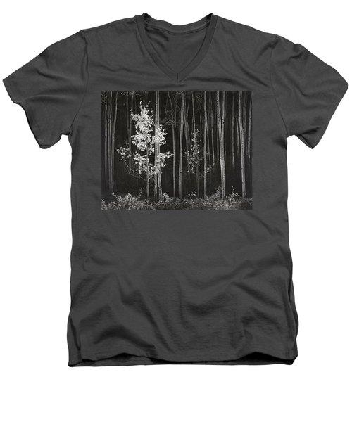 Aspens Northern New Mexico Men's V-Neck T-Shirt