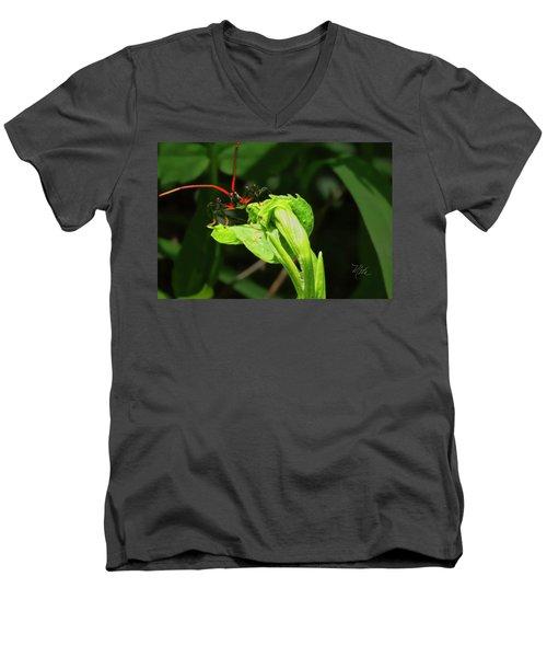 Assassin Bug Men's V-Neck T-Shirt