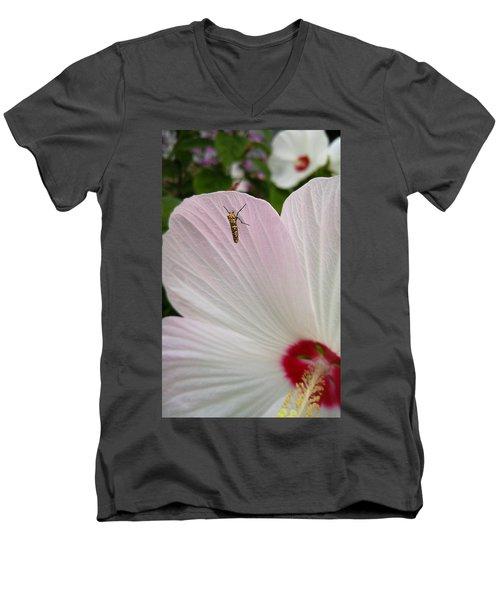 Atteva Aurea 1 Men's V-Neck T-Shirt