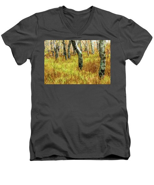 Autumn At Craggy Gardens Ap Men's V-Neck T-Shirt