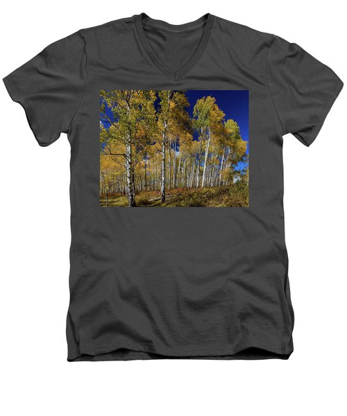 Men's V-Neck T-Shirt featuring the photograph Autumn Blue Skies by James BO Insogna