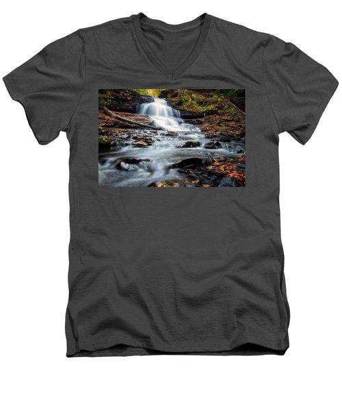 Autumn Days Men's V-Neck T-Shirt