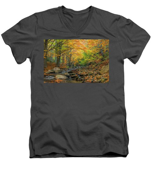 Autumn Landscape Men's V-Neck T-Shirt