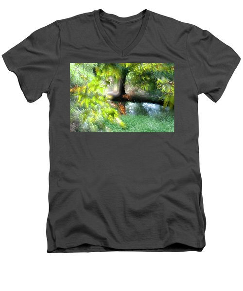 Autumn Leaves In The Morning Light Men's V-Neck T-Shirt