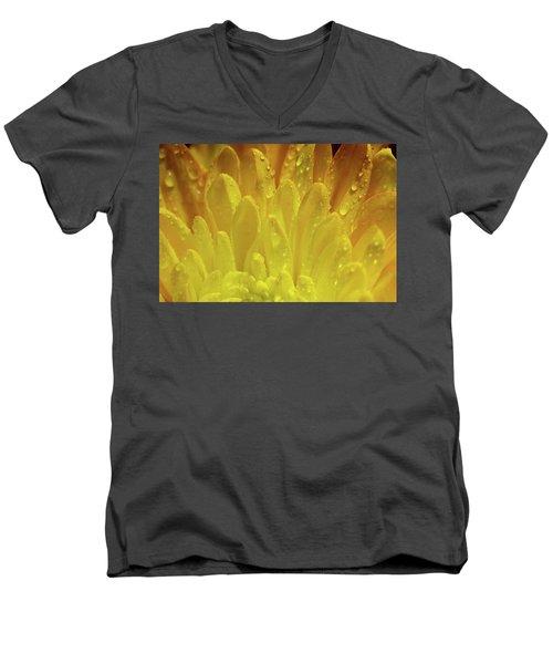 Autumn Macro-1 Men's V-Neck T-Shirt
