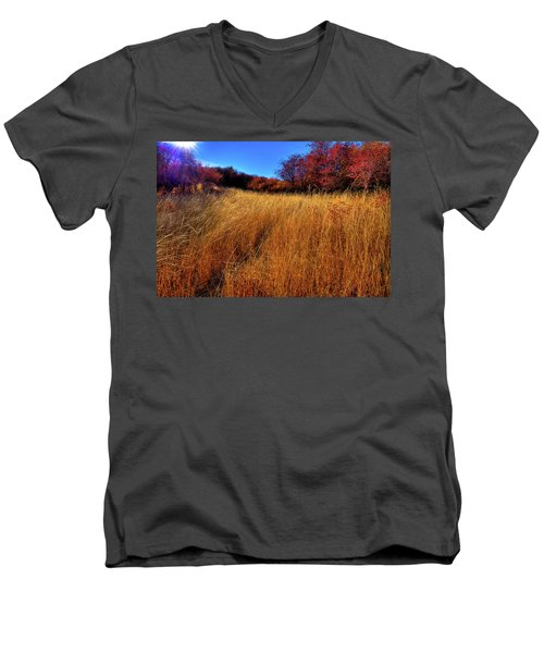 Men's V-Neck T-Shirt featuring the photograph Autumn Path by David Patterson