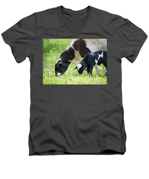 Baba And Pepe Grazing Men's V-Neck T-Shirt