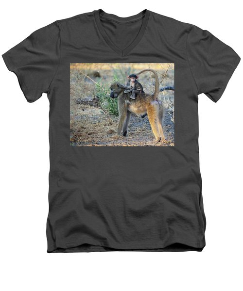 Baboon And Baby Men's V-Neck T-Shirt