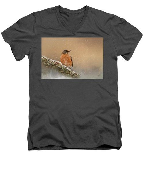 Backyard Visitor Men's V-Neck T-Shirt