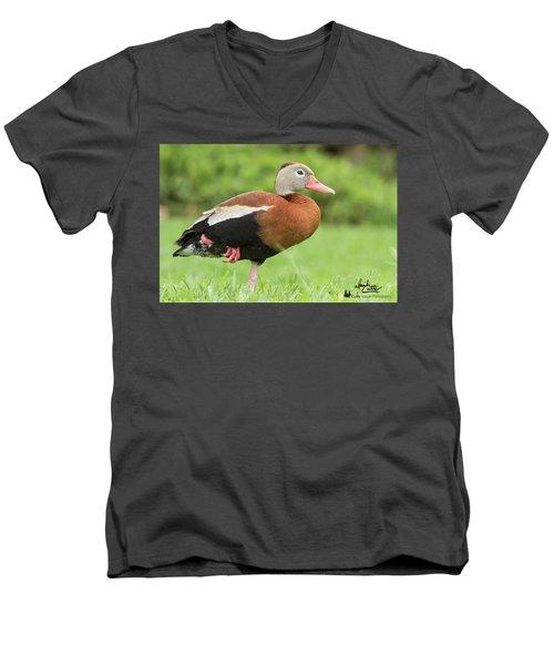 Balancing Black Bellied Whistling Duck Men's V-Neck T-Shirt