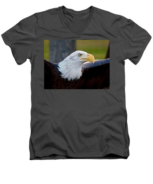 Men's V-Neck T-Shirt featuring the photograph Bald Eagle by Dan Miller