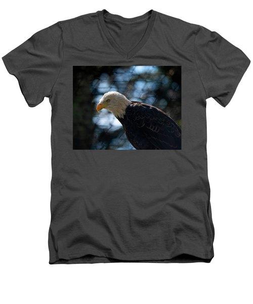 Bald Eagle Grandfather Mountain Men's V-Neck T-Shirt
