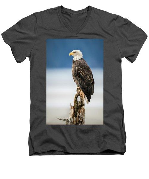 Bald Eagle On Snag Men's V-Neck T-Shirt