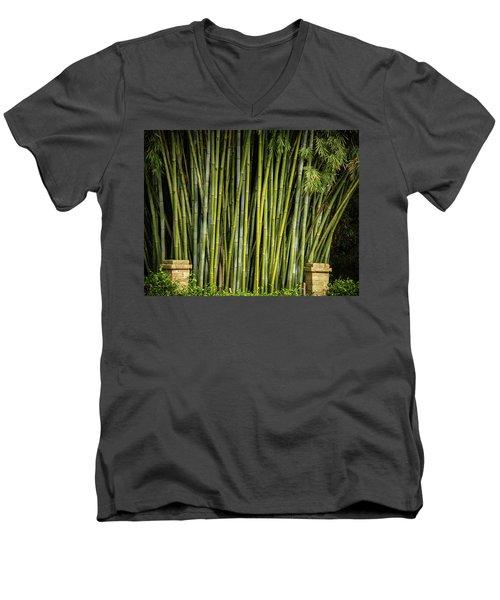 Bamboo Wall Men's V-Neck T-Shirt