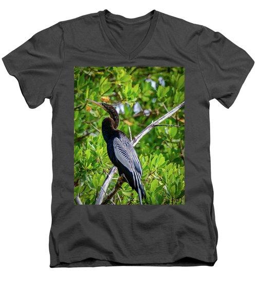 Beautiful Anhinga Men's V-Neck T-Shirt