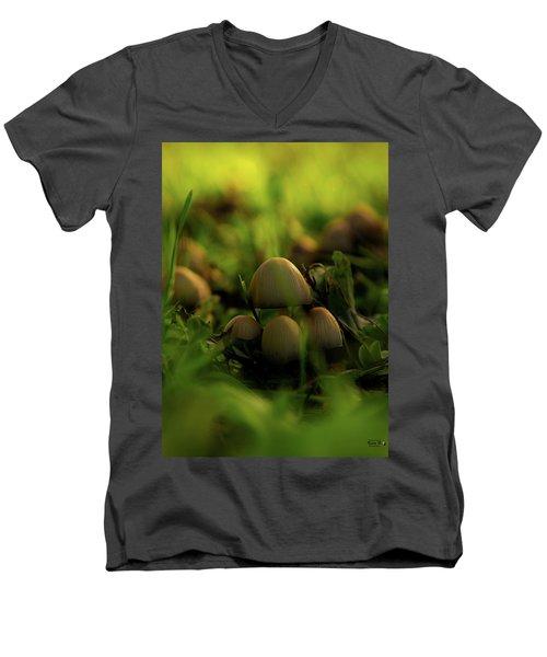Beauty Of Fungus Men's V-Neck T-Shirt